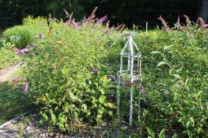 Butterfly bush - white garden decor USE
