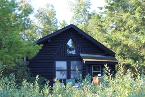 Cabin nestled in greenery USE
