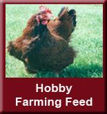 Hobby-farming-feed[1]