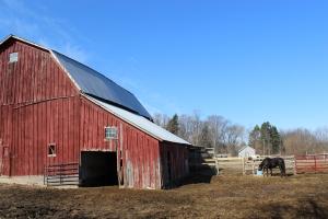 Red barn side, horse, blue sky nice