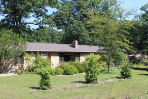 Three arborvite-house-blueskky USE