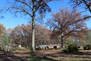 Barn-shack-deepsky-trees USE
