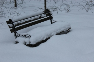 Bench in snow USE