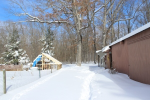 Blue sky coop barn and snowy ground