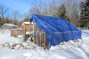 Blue sky tarp in landscpae USE