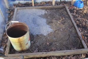 Ash in sand box