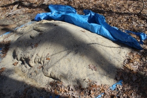 Sand pile uncovered USE