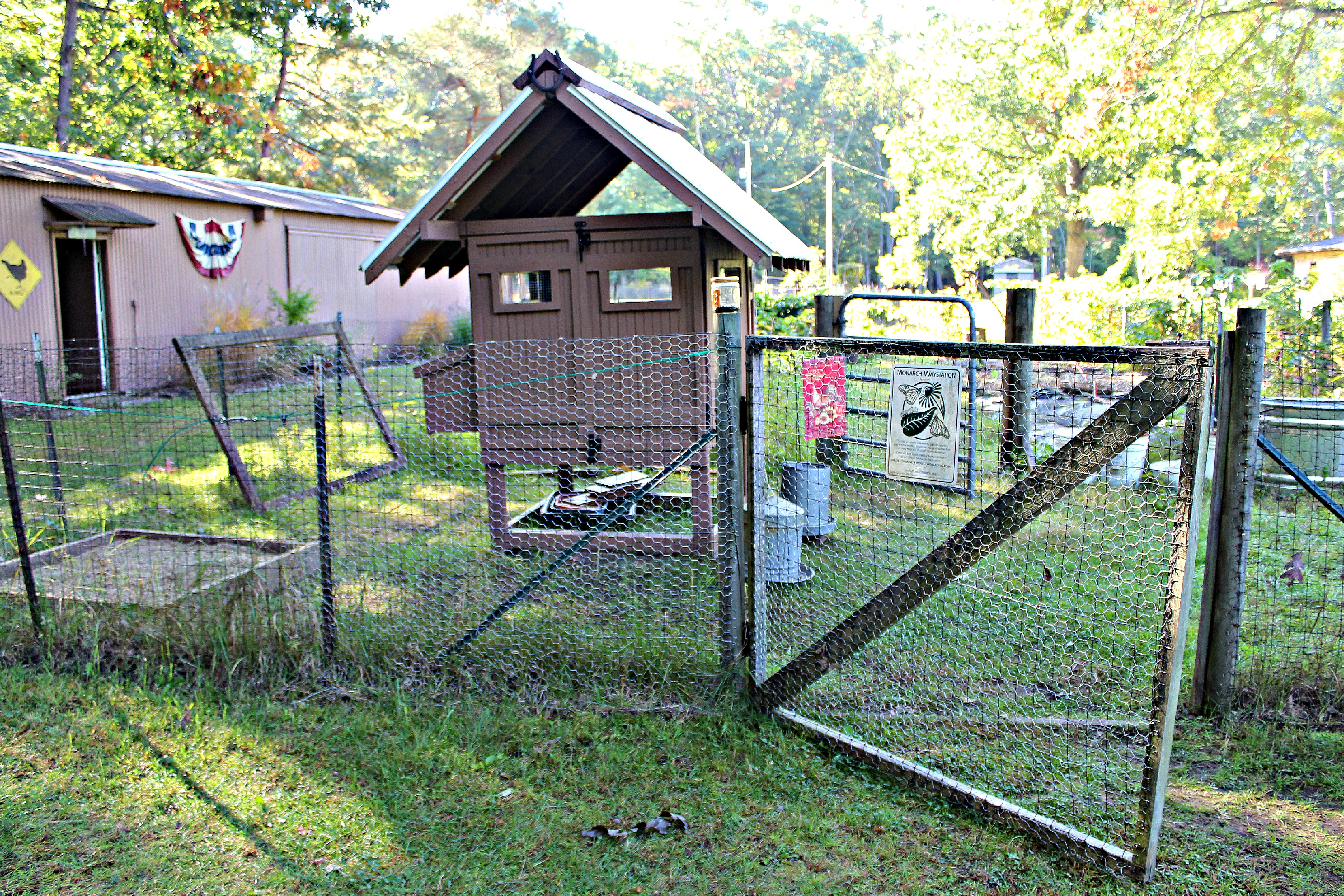 our coop in the backyard poultry magazines photo contest small