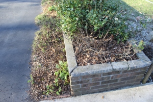 Planter box USE