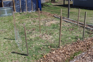 Chicken wire playpen