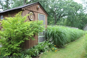 Back of pool shack long row of grasses USE