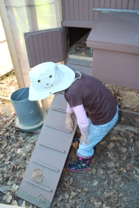 Brenna cleaning chickne ladder USE