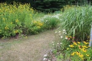 grasswalkway and blooms flowers USE