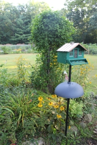 VERT Green birdhouse and climber USE
