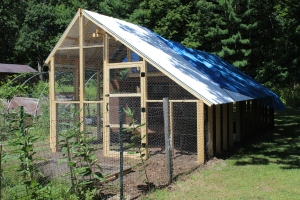 Chicken Run from barn USE