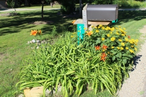 Fully flowered mailbox July great USE