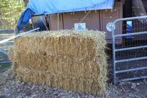 Straw buffer close