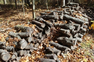 Woodpile USE