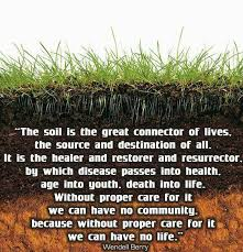 Soil is the great connector of life small house big sky for Soil our life