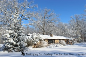 House front SNOWY w Thanksgiving text and leaf jpeg