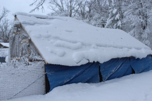 Coop roof and tarp under snow USE