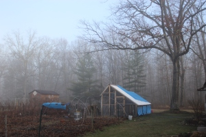 Chicken coop in fog USE