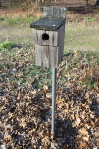 Blue bird house in meadow entire plus pipe