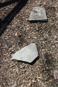 Two step stones in bark chips chicken garden
