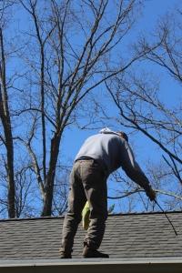 VERT Frank spray roof