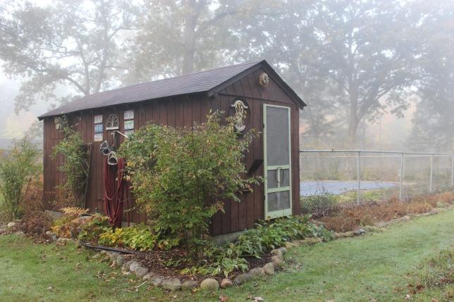 pool-house-in-the-fog